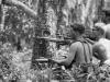 越南童子军使用特殊战术取胜, 许世友一声令下斩草除根