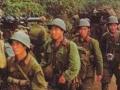 中越战争秘闻:越战苏