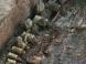 河南洛阳2600多年前戎人王级大墓现真容